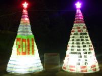 2010_12120016
