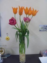2011_02060003