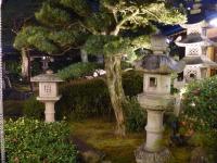 2011_02240004