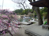 2011_02270017