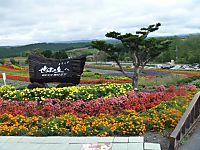 2011_09230034