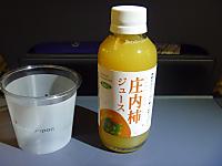 2011_10030002_2
