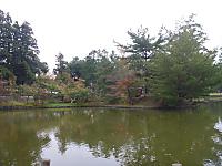 2011_11060027