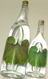 Tuwabuki02